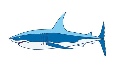 Shark cartoon illustration Isolated on white background