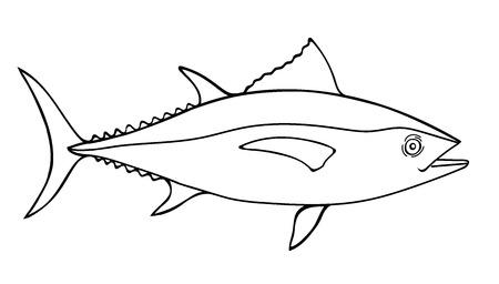 Ilustración de boceto de atún, una ilustración de doodle de vector dibujado a mano de un atún