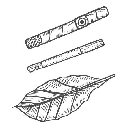 Puros y hojas de tabaco. Juego de fumar. Estilo de grabado del bosquejo.