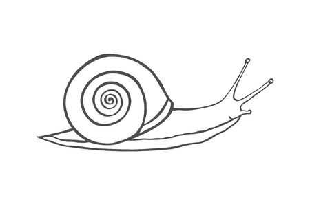 Sketch shell concept isolated on white Vector Ilustracje wektorowe