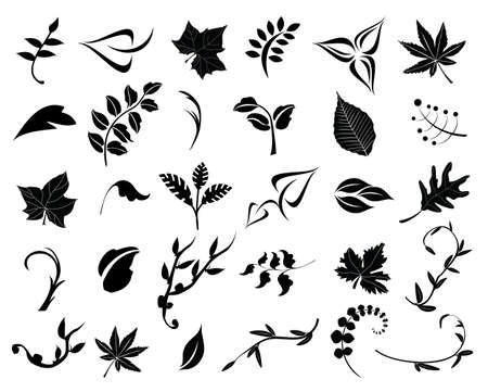 Collection of 30 leaves. Easy to edit vector image. Illustration