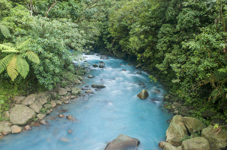 The blue river flows through the jungle in Costa Rica