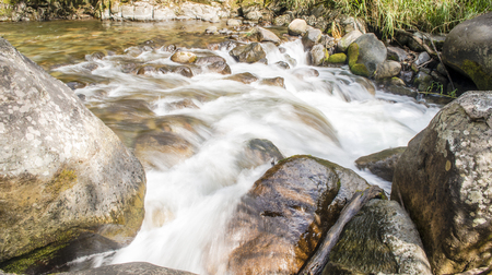 Zacht water loopt door een rivier hoog in de Talamanca bergen van Costa Rica
