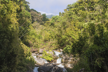 A look through the jungle, over the river to volcan chirripo. Reklamní fotografie