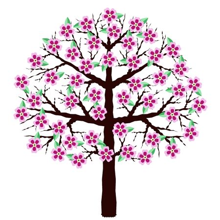 Blooming sakura isolated on a white background. A tree with flowers. Cherry blossoms, vector illustration.