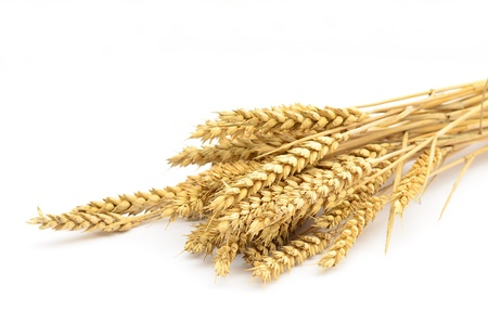 beardless: Wheat