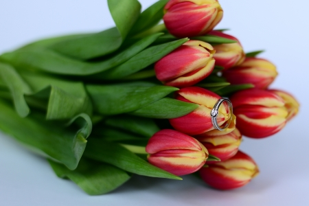 Engagement ring on a tulip