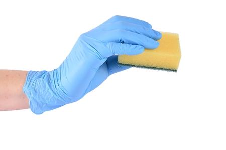 Sponge photo