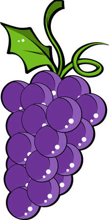 red grape: Illustration of Grapes with leaves Stock Photo