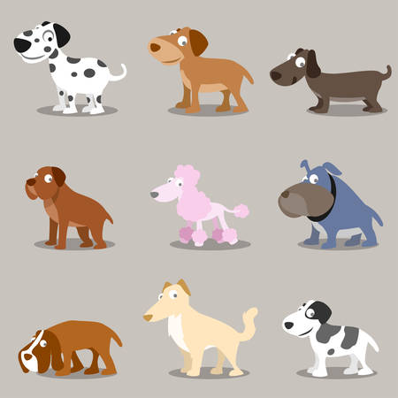 collection of cute dogs in different breeds. isolated.