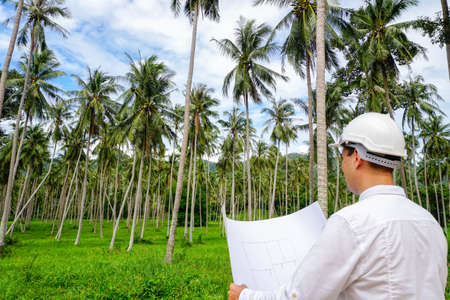Architector inspect land for construction site. Investments in real estate Banco de Imagens