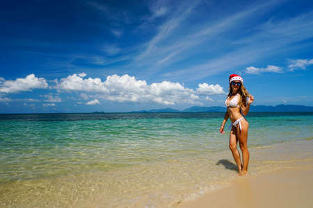 サンタ クロースの帽子と浜辺の女撮影ソニー a6300 写真素材
