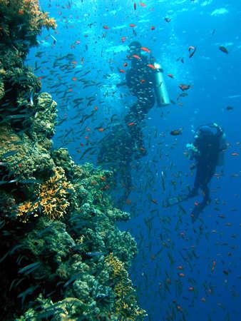 Scuba diver group
