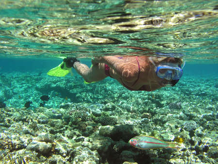 Woman snorkeling in Red sea Stock Photo