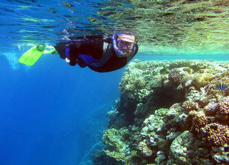 Man snorkeling in Red sea Stock Photo - 3609186