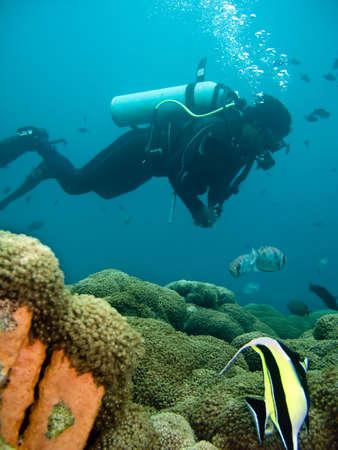 Diver Stock Photo - 3918253