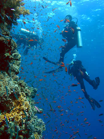 Scuba diver group by reef