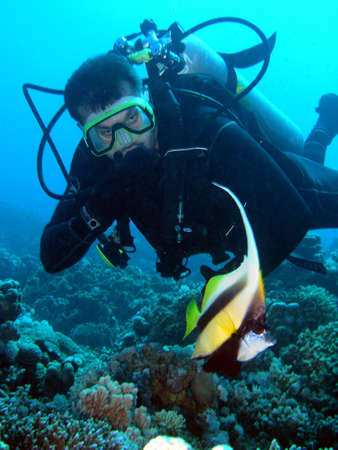 Diver and fish       photo