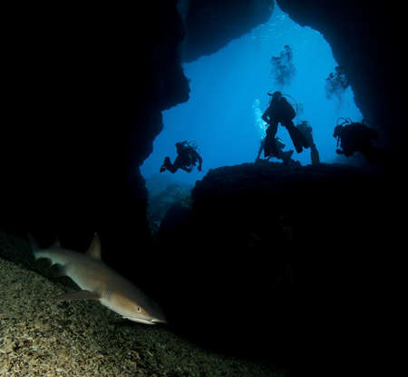 Group of divers by shark cave