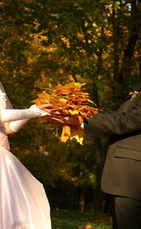 futurity: The groom and the bride with maple leaves