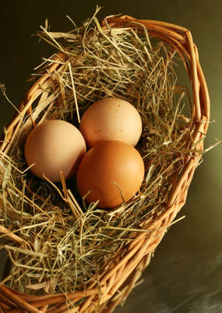 Three brown eggs latent in a dry grass Stock Photo - 795807