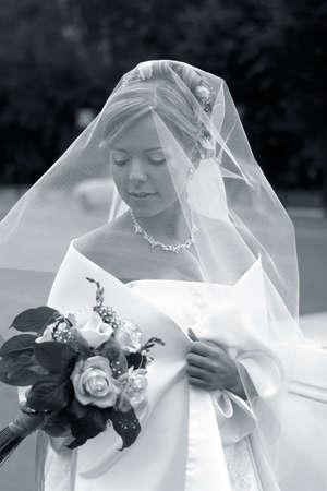 The beautiful bride under a veil. b/w+blue tone Stock Photo - 853517