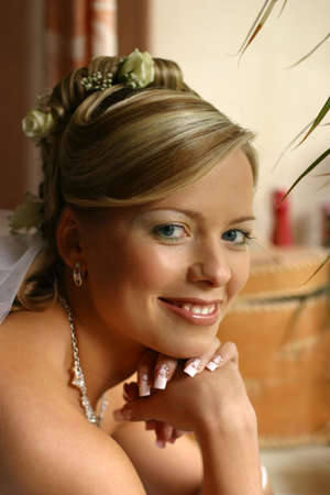 Portrait of the smiling beautiful bride Stock Photo - 858900