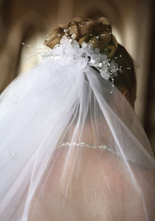 The beautiful bride in a veil Stock Photo - 1052555