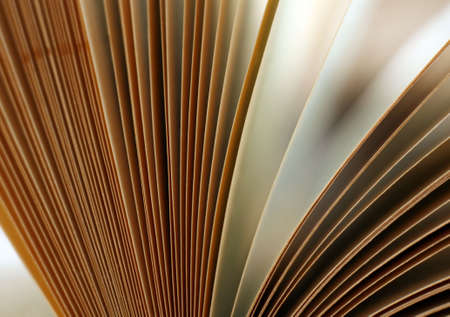 The image of the open book close-up Stock Photo - 1357516