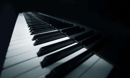 piano lesson: Grand piano ebony and ivory keys