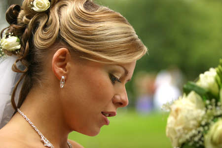 fiance: The beautiful bride on a green background Stock Photo