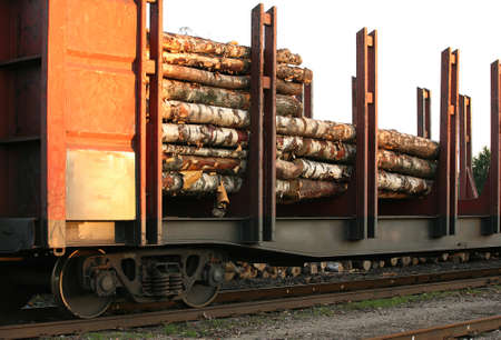 wood railroads: Wagon with the wood, expecting in a warehouse of transit Stock Photo