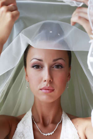 Portrait of the beautiful bride in a veil Stock Photo - 5364340