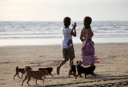 legian: Two woman walks dogs on a sunset Stock Photo