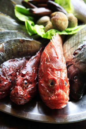 Fresh fish onon a metal tray for sale photo