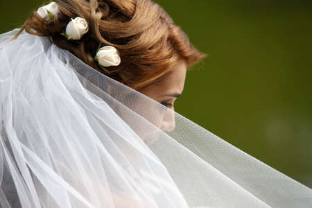 The beautiful bride on a green background Standard-Bild