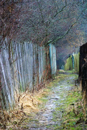 lopsided: Illustration of a wet path about a fence Stock Photo