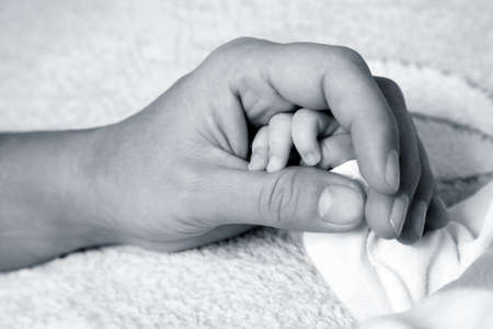 The image of hands of parent and the child Stock Photo - 8582525