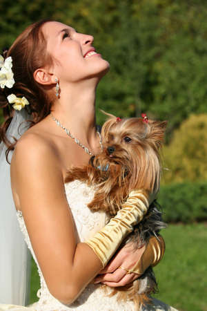 The laughing bride with the yorkshire terrier photo