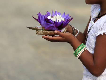 lotus temple: Flowers of a lotus in hands of the little girl