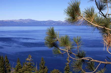 fannette: clean waters of Lake Tahoe, USA