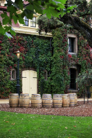 mediterranian style: Napa valley vineyard, California