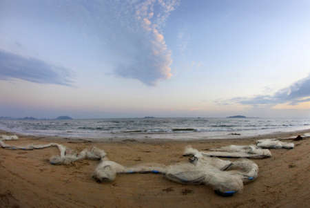 Panorama of a beach with fishing networks on a coast Stock Photo - 13252404