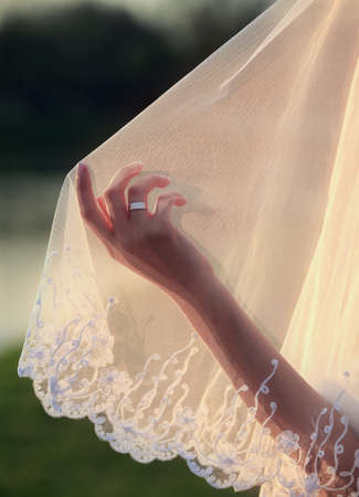 Wedding veil and hand of the bride photo