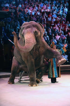 clumsiness: Representation in the Moscow circus, Jury Durov