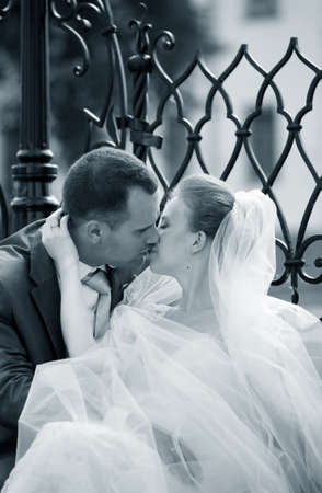 Beautiful the bride and the groom kiss Stock Photo - 25101604