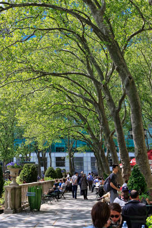 bryant park: NEW YORK, USA - MAY 16: A late afternoon view of on Bryant Park on May 16 2013 in Manhattan. Bryant Park is a popular 9.6 acre park located adjacent to The NY Public Library.