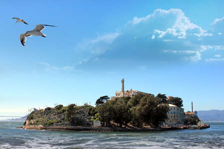 Alcatraz Island in the San Francisco Bay. Seagull flying, in motion.