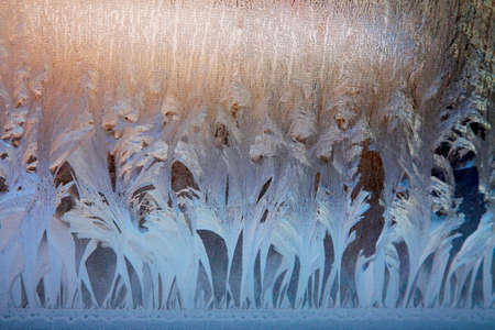 icily: Frosty natural pattern on winter window