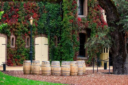 Napa valley vineyard, California